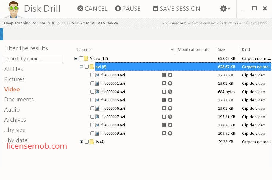 Disk Drill 4.0.520.0 Professional Plus Full Crack Key